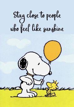 """Snoopy & Woodstock"" quotes quotes for teens quotes humor quotes inspiraitonal quotes sarcasm about love change about love crushes about love cute about love family about love for him about love soul mates Charlie Brown Et Snoopy, Meu Amigo Charlie Brown, Charlie Brown Quotes, Snoopy Images, Snoopy Pictures, Funny Pictures, Peanuts Quotes, Snoopy Quotes, Peanuts Cartoon"