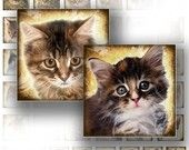 Who can resist kittens digital collage sheet part of a TAGT team Etsy treasury, click to see more.