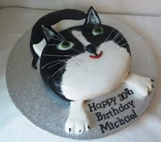 Excellent Picture of Cat Birthday Cakes . Cat Birthday Cakes Cat Birthday Cake Wedding Birthday Cakes From Maureens Kitchen Birthday Cake For Father, Birthday Cake For Cat, Creative Birthday Cakes, Birthday Cake With Photo, Birthday Cake Pictures, Happy Birthday Cakes, Birthday Ideas, Birthday Recipes, Birthday Design