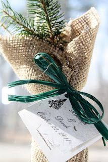 I love the idea of eco-friendly favors - like tree saplings! These are from Tree Beginnings.