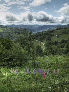 La Bresse, Vosges, France