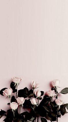 Floral Wallpaper Phone, Watercolor Wallpaper Iphone, Flower Background Wallpaper, Framed Wallpaper, Sunflower Wallpaper, Aesthetic Pastel Wallpaper, Apple Wallpaper, Rose Wallpaper, Locked Wallpaper