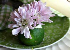 Rattlebridge Farm: Decorating With Vegetables