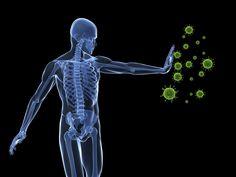 Food for Stronger Immune System.