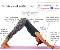 Yoga Montpellier Die Haltung des Hundes mit dem Kopf nach unten, detaillierte Erklärungen #detaillierte #erklarungen #haltung #hundes #montpellier #unten
