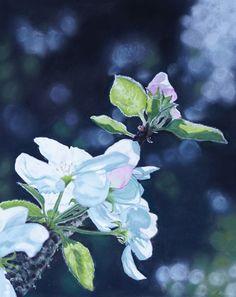 """Leinwanddruck """"Apfelblüte"""" Flower Painting, Pastel Painting, Art, Painting"""