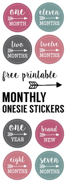 Baby girl monthly onesie stickers free printable. Print free baby onesie stickers and take month by month photos of your newborn. Great DIY baby shower gift.