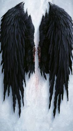 A pair of brutally removed wings. Angel Wings Art, Fallen Angel Wings, Angel Wings Drawing, Fallen Angel Tattoo, Angel Wings Back Tattoo, Tattoo Wings, Tattoo Tribal, Tattoos Skull, Wing Tattoos