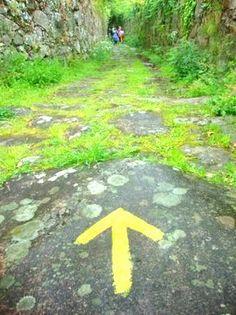 ..._Camino de Santiago