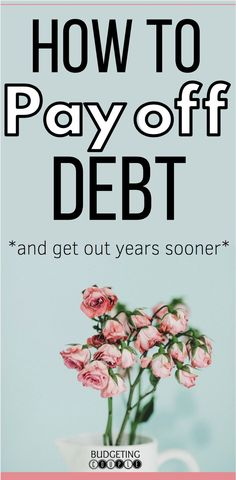 Find out the only thing you need for debt payoff while saving money! Learn how to pay off debt years sooner while saving thousands in interest payments! Start saving money every month so you can finally stop living paycheck to paycheck! Debt Repayment, Debt Payoff, Consolidation Loans, Best Money Saving Tips, Saving Money, Money Tips, Debt Snowball Calculator, Credit Card Interest, Paying Off Credit Cards