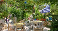 vineyards in greece - Google Search