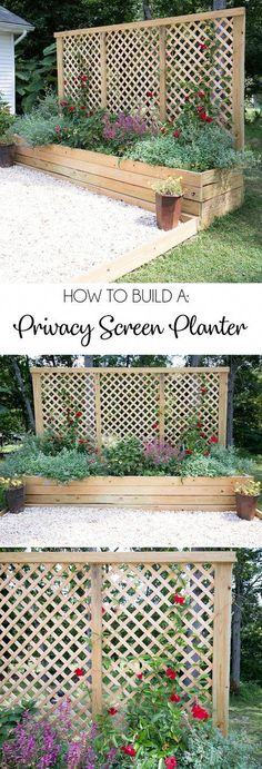 Screen Planter DIY- an inexpensive weekend project with major impact!, Privacy Screen Planter DIY- an inexpensive weekend project with major impact!, Privacy Screen Planter DIY- an inexpensive weekend project with major impact! Privacy Landscaping, Garden Landscaping, Privacy Ideas For Backyard, Diy Landscaping Ideas, Landscaping Software, Landscaping Design, Mailbox Landscaping, Planting For Privacy, Wooded Backyard Landscape