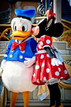 Donald Duck and Minnie Mouse - Walt Disney World Walt Disney, Disney Parks, Disney Pixar, Disney Characters, Disney Travel, Minnie Mouse, Mickey Mouse And Friends, Disney Dream, Cute Disney