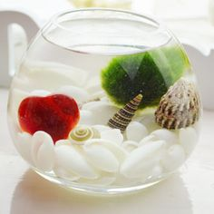 Bubble Shaped Glass Terrarium Bowl