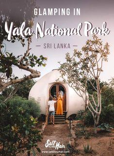 Glamping in Yala National Park – Wild Coast Tented Lodge #yala #camping #glamping #national #park #srilanka #yalanationalpark #hotel