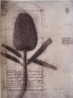 Botanicals  2006