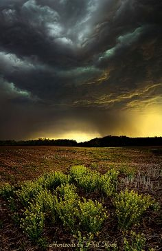 Storm Chaser -Phil Koch / nature photography
