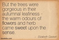 But the trees were gorgeous in their autumnal leafiness - the warm odours of flowers and herb came sweet upon the sense. Elizabeth Gaskell