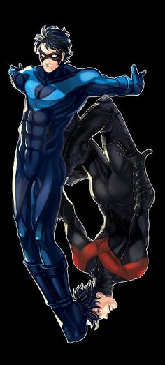 The old and new Nightwings, neat pic
