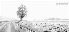 365 Tage Fotochallenge: Tag 117 - Winterlicher April