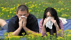 Здоровое питание и аллергия