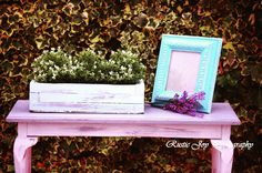 Vintage wooden garden box and bench