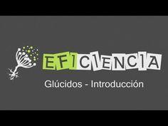 GLÚCIDOS: INTRODUCCIÓN TIPOS Y FUNCIONES Hidratos de Carbono Monosacáridos Polisacáridos Heterósidos - YouTube