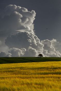 Morning Storm by Carlos Gotay on 500px