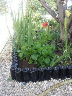 Cerca de jardim feita com garrafas.  Veja mais em http://www.comofazer.org                                                                                                                                                      Mais