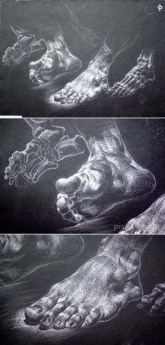 foot. drawing with chalk on black paper / Завьякова Н.А. 2 курс