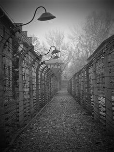 Auschwitz Concentration Camp / November 2012 - Amelia Barnes