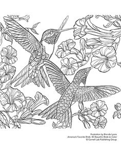 Beautiful prints to color. and use in your home.