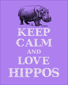 keep calm and love hippos