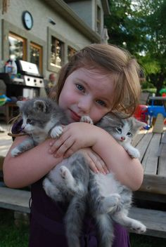 You don't have to be a brainiac to figure out how to celebrate Hug Your Cat Day — but you do have to be careful and maybe even a little bit sneaky when it comes to successfully giving your feline a hug.