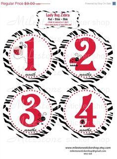 Lady Bug Zebra Monthly Milestone Stickers by MilestoneStickerShop • $9.00