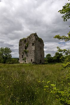 Castles of Leinster: Castlerea, Longford (1) by Mike Searle - near to Bawn Cross Roads and  Moydow, Ireland
