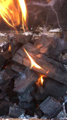 Biff's Big Six braai wood