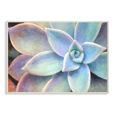 Dimensions: 10 x 0.5 x 15 Inches. Proudly Made in USA. Lithograph Print Mounted on Sturdy 0.5 Inch MDF (wood) - Hand Finished and Ready to Hang. Classic style on our classic wood plaque. Design By Joshua Chace. Stupell Industries Succulent Plant Vibrant Bloom Painting 15-in H x 10-in W Vintage/Retro Wood Print | CCP-242-WD-10X15 Wood Wall Art, Framed Wall Art, Canvas Wall Art, Plant Wall, Planting Succulents, Wood Print, Frames On Wall, Buy Frames, Painting Frames