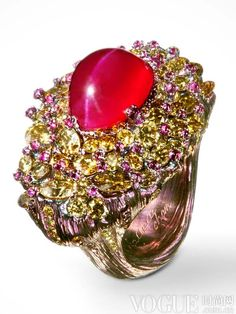 Fairy dust ring, Cats Eye Ruby 13.87 kt, ruby, diamond. Wallace Chan
