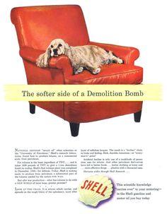 Shell - 19420309 Life