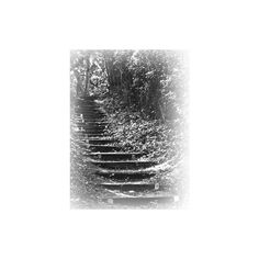 Epifanías Imagenes Editadas PNG ❤ liked on Polyvore featuring black and white, backgrounds, stairs, steps and tubes