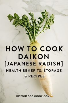 Daikon is a long white Japanese radish, which has a crunchy texture and a light peppery and sweet taste. From pickles to salad and soups to simmered dishes, it's widely used in Japanese cooking. How To Cut Avocado, Fresh Avocado, Easy Japanese Recipes, Asian Recipes, Health Benefits Of Radishes, Daikon Recipe, Asian Grocery, Radish Recipes, Winter Vegetables