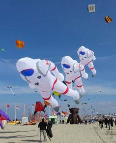 "Chris Hadfield on Twitter: ""My kites never looked like this! Cool ..."
