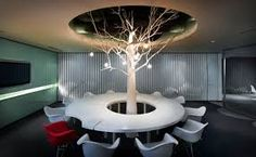 Image result for tree in office