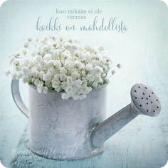 Old vintage metal watering can filled with white baby's breath gypsophila flowers on light blue shabby chic background - stock photo Prayer For Today, Prayer Request, Small Garden Wedding, Garden Weddings, Finnish Words, Shabby Chic Background, Pots, Blue Shabby Chic, Metal Watering Can