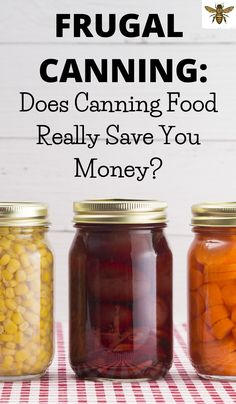 Does Canning Food Really Save You Money? As an avid canner let me explain how you save money by canning along with my tips and tricks! Pressure Canning Recipes, Canning Tips, Freezing Fruit, Canning Supplies, Fruit Preserves, Healty Dinner, Food Security, Mason Jar Gifts, Save Your Money