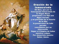 Inmaculada Concepción de María. Ora pro nobis.