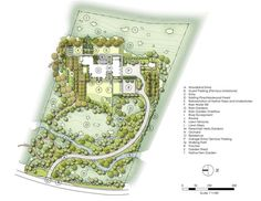 Concept plan for woodland rain garden by Jeffrey Carbo