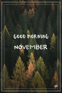 When the of the month has arrived, share a warm morning pic with the ones you care about and welcome a lovely new month. Hello December Quotes, Hello November, Welcome November, Happy November, Days And Months, Months In A Year, Morning Thoughts, Good Morning, New Month Wishes