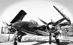 Tigercat Grumman Military Aircraft 8x10 Black and by AerieImages